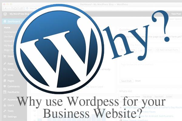 use wordpress business website